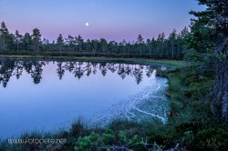 Moonlight Lutakkoneva 1024